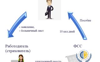 Заявление сотрудника на выплату пособия для фсс инструкция по заполнению