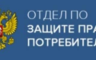 Роспотребнадзор санкт петербург горячая линия телефон