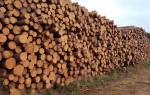 Авторизация на портале егаис учета древесины и сделок с ней