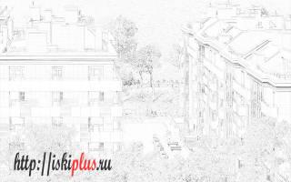 Как узнать законы москвы для юридическое факт проживания получения пособия