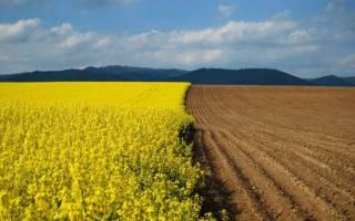 Подлежит ли регистрации договор субаренды части земельного участка