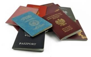 Сообщить о втором гражданстве через госуслуги