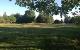 Перевести земли сельхозназначения в собственности лпх