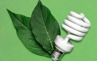 Как утилизировать люминесцентные лампы в детском саду