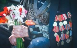 Фз о ветеранах боевых действий с изменениями на 2018 скачать